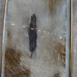 feather. drawing on cloth. Ines Seidel.