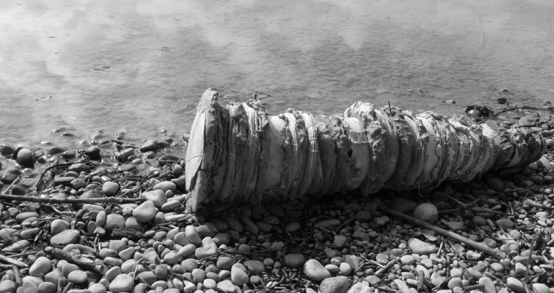 old stories, rolled ashore. Ines Seidel