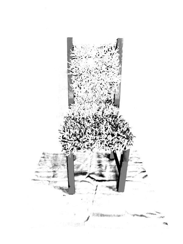throne. digital photography with chair and crocheted story. Ines Seidel.